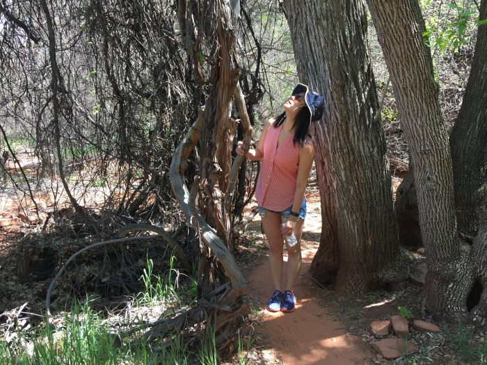 Walking through the wooded area of Crescent Moon picnic area.
