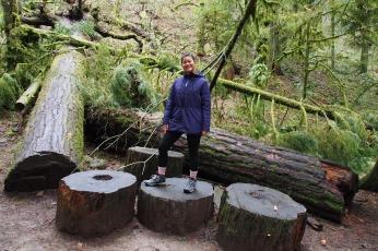 What big stumps!