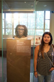 Actual height of the Homo erectus compared to Alina